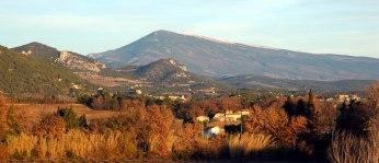 provence6.jpg