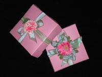 the-pink-box.jpg
