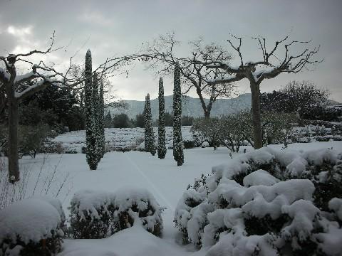 vickis-snow-2009-116