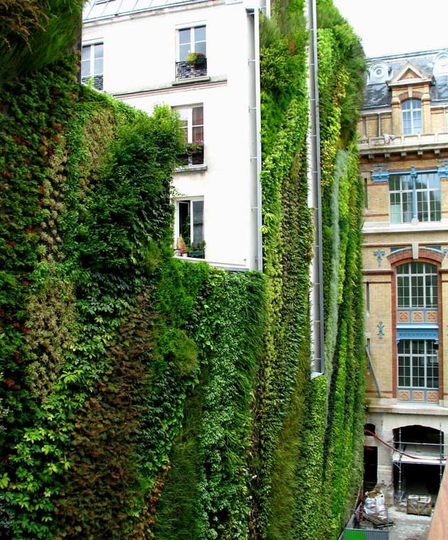 Addison Chapel Apartments: The Paris Apartment