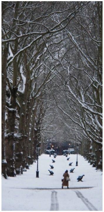 Green-Park-3-PicMonkey-Collage1