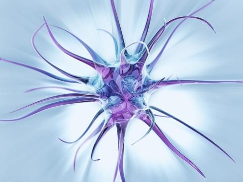 neuron_synapse-1024x768