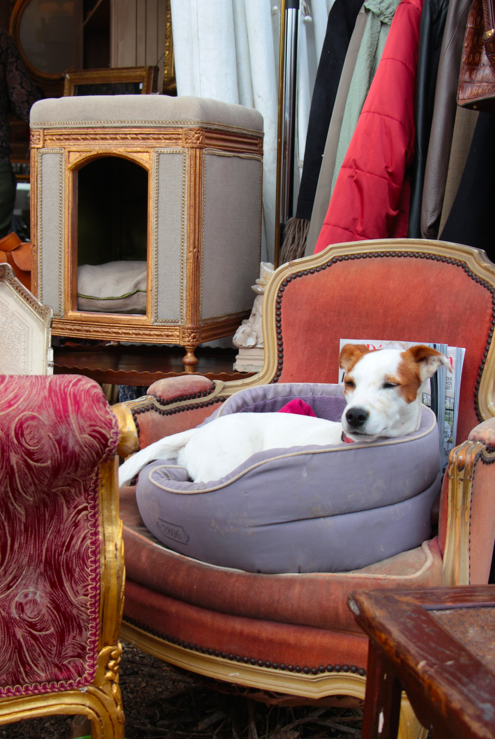 fleamarkets | the paris apartment